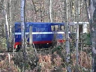 Train at Ruislip Lido